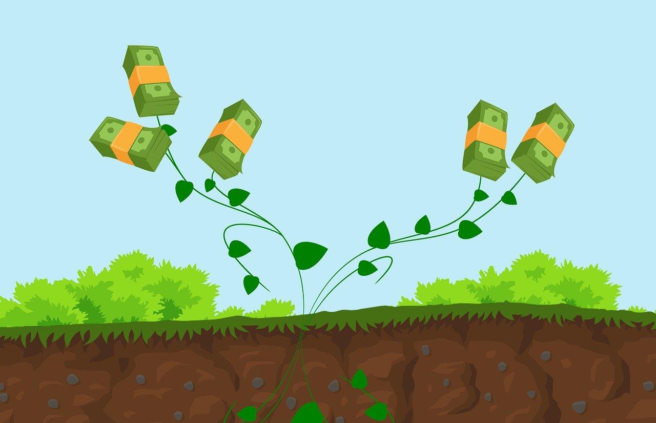 Systemy wynagrodzeń. Szkolenie online Certified Compensation and Benefits Professional